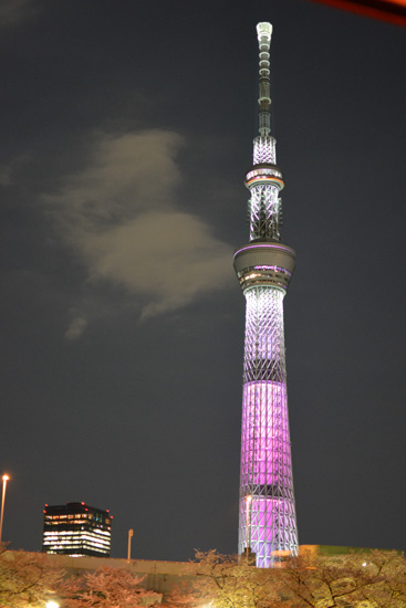 2018yozakura_0121.jpg